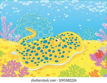 Blue-spotted stingray among corals on the bottom of a tropical sea, vector illustration in a cartoon style