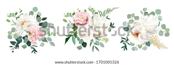Blush pink rose and sage greenery, ivory peony, hydrangea, ranunculus flowers, eucalyptus vector floral bunches. Floral pastel watercolor style wedding bouquets. All elements are isolated and editable