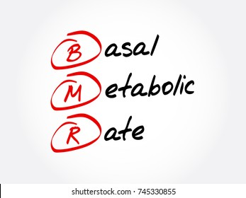 BNR - Basal Metabolic Rate acronym, concept background