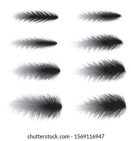 Boa Feathers vector fashion design art brushes & elements