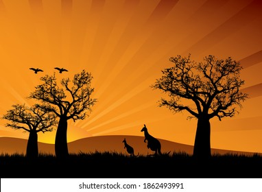 boab trees in the sunset with two kangaroos and a joey