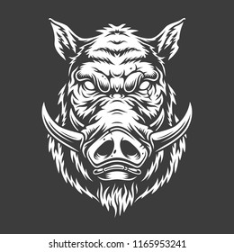 Boar head in black and white color style. Vector illustration