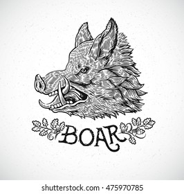 Boar head in graphic style, hand drawn illustration.