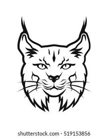 Bobcat head.