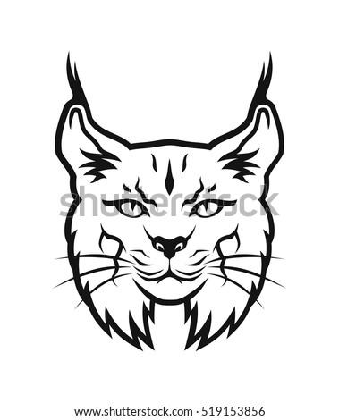 Bobcat Head Stock Vector Royalty Free 519153856