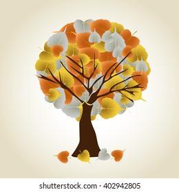 bodhi leaf autumn tree.vector illustrator.