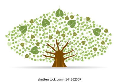 Bodhi (Sacred Fig) tree Vector Illustration.
