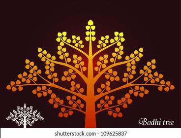 Bodhi tree vector