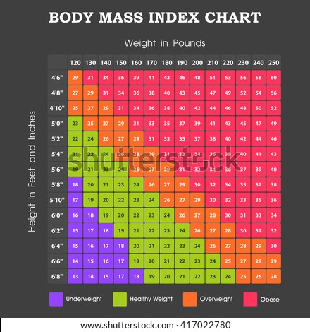 Body Mass Index Chart Height Weight Stock Vector Royalty Free