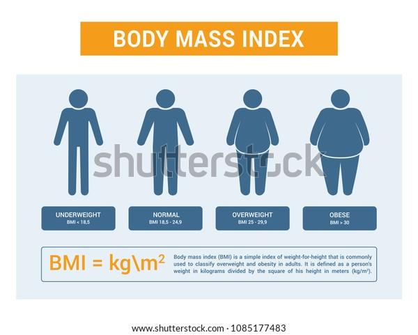 Body Mass Index Chart Vector Medical Stock Vector (Royalty