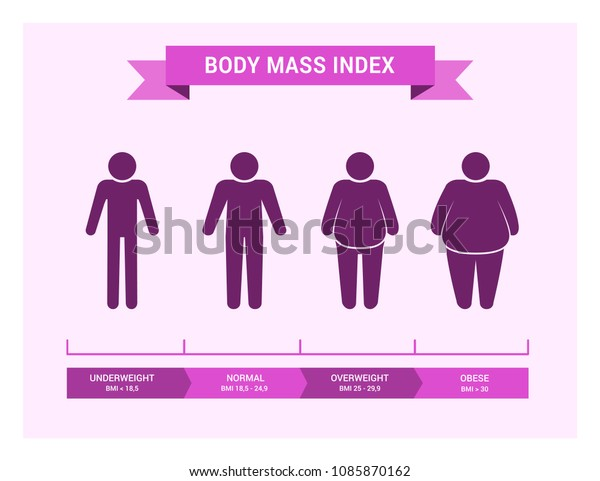 Body Mass Index Chart Vector Medical Stock Vector (Royalty