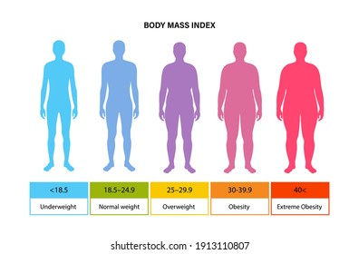Body mass index poster. Man silhouettes with obese, normal and slim fit. BMI ranges from overweight to underweight male persons. Adult people with different metabolism and weight vector illustration.