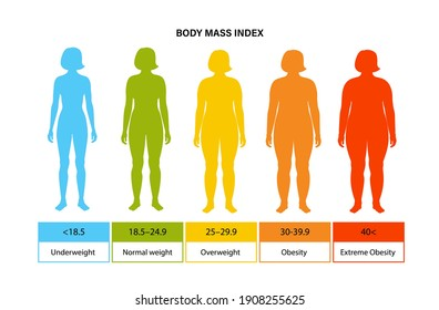 Body mass index poster. Woman silhouettes with obese, normal and slim fit. BMI ranges from overweight to underweight female person. Adult people with different weight and fat level vector illustration