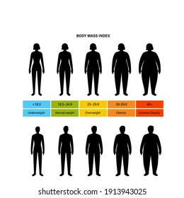 Body mass index poster. Woman and man silhouettes with obese normal and slim fit. BMI ranges from overweight to underweight infographic. People with different metabolism and weight vector illustration
