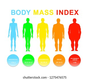 woman body mass index medical infographic stock illustration