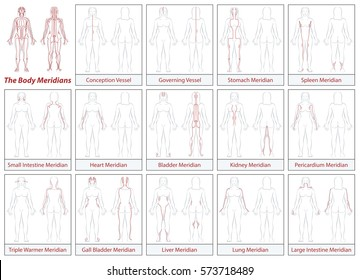 Body meridians chart - female body - schematic diagram with main acupuncture meridians and their directions of flow.