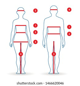 Woman Body Measurement Chart Images, Stock Photos & Vectors