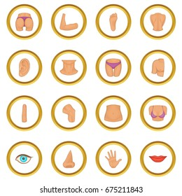 Body parts icons circle gold in cartoon style isolate on white background vector illustration
