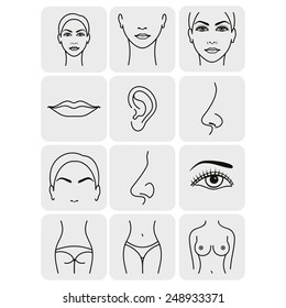 body parts icons plastic face surgery