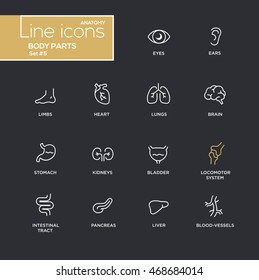 Body parts - modern vector plain simple thin line design icons and pictograms set - black background. Eyes, ear, limbs, heart, blood, lungs, brain, bladder, liver, stomach, kidneys locomotor system