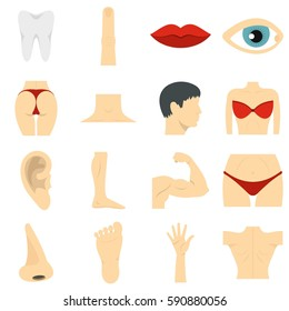 Body parts set icons in flat style isolated on white background