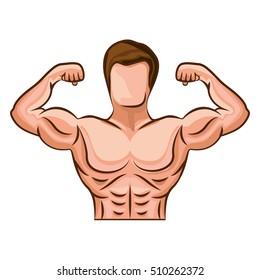 Bodybuilding muscle design