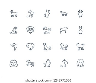 Boerboel dog, American Hairless Terrier Maltipoo, Nova Scotia Duck Tolling Retriever Great Pyrenees Chihuahua Pomeranian dog outline vector icons from 20 set