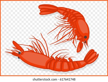 Boiled shrimps isometric isolated on transparent background vector.