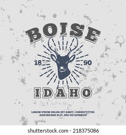 Boise, Idaho.  t-shirt graphic. Vector illustration