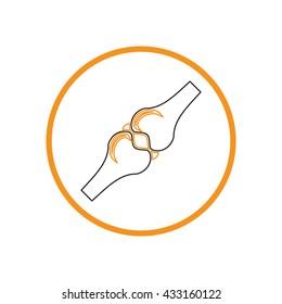 bone and joint human anatomical vector medical illustration.