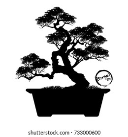 Bonsai Silhouette Hd Stock Images Shutterstock