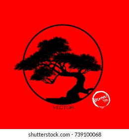 Bonsai tree. Black silhouette of bonsai. Detailed image. Vector illustration. tree logo.