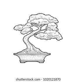 Bonsai Tree Drawing Images Stock Photos Vectors Shutterstock