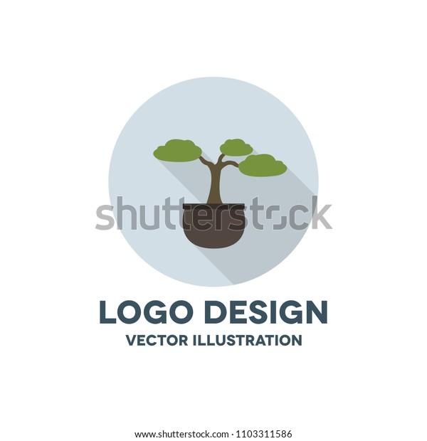 bonsai tree vector icon