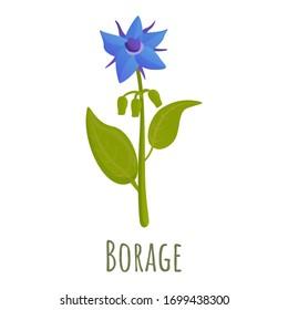 Borage flower icon. Cartoon of borage flower vector icon for web design isolated on white background