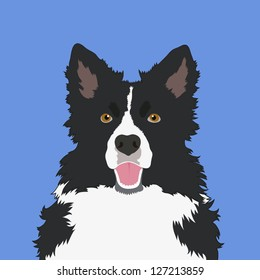 Border collie, The buddy dog