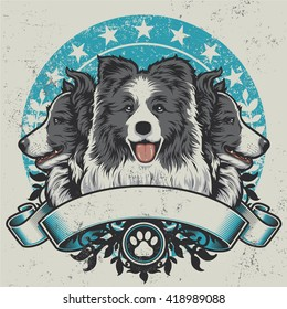 Border Collie Crest Design. Vector illustration of three purebred border collie dogs (front view and profile views) sitting proudly over a grunge banner and floral design elements.