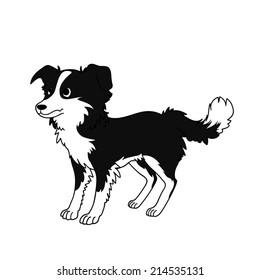 Border collie dog vector
