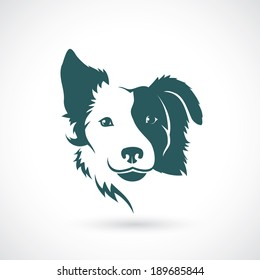 Border Collie dog - vector illustration