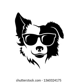 Border Collie dog wearing sunglasses - isolated vector illustration