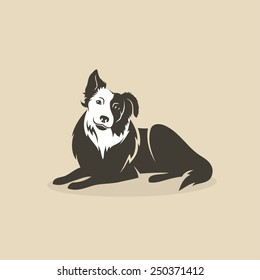Border collie lying down - vector illustration