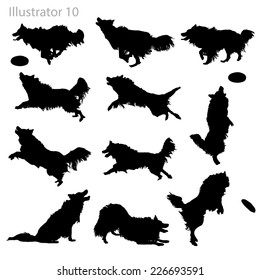 Border Collie Silhouettes.
