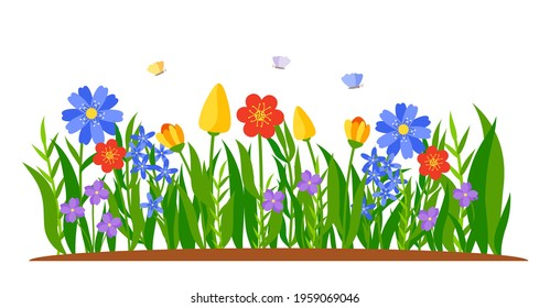 Border of flowers growing in grass. Spring tulips, daffodils or daisies in flat cartoon style. Flower bed. Colored landscape nature springtime decorative element. Isolated on white vector illustration