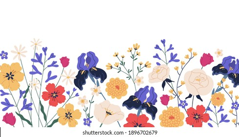 Border of gorgeous spring blooming flowers. Backdrop with iIrises, camomiles, roses, anemones and chrysanthemums. Floral flat vector illustration isolated on white background