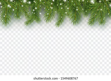 Border with green fir branches isolated on transparent background. Pine, xmas evergreen plants banner. Vector snow Christmas tree border.