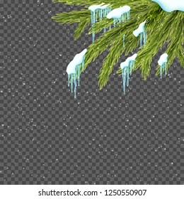 Border with realistic fir tree, snow and icicles over transparent background. Winter snowfall. Design template for merry christmas. Vector illustration.