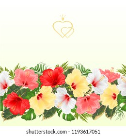 Border seamless background various hibiscus white yellow red pink flovers vector Illustration for use in interior design, artwork, dishes, clothing,  greeting cards,packaging