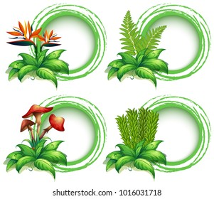 Border templates with leaves and flowers illustration