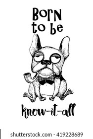 Born to be know-it-all. Dog T-shirt lettering design. Hand drawing funny French Bulldog