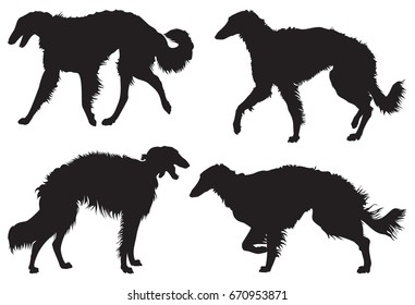 Borzoi – Russian Wolfhound Dog Breed Silhouettes, vector illustration from Dog Show series